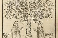 Raymond Lulle, l'arbre de la science, 16ème siècle - wikimedia commons, domaine public