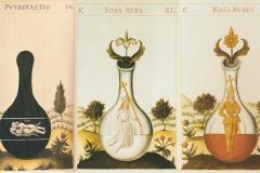 3 phases de l'œuvre, Donum Dei, version 17ème siècle - domaine public