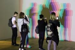 Votre ombre incertaine, Olafur Eliasson, 2010 - SL2019