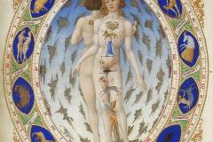 Frères de Limbourg, L'homme anatomique du zodiaque, Très riches heures du duc de Berry, 15ème siècle - wikimedia commons, R.M.N. / R.-G. OjŽda