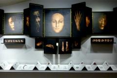 Sophie Zénon, le corps à vif, installation, 2014 - SL, exposition ex-voto, 2014