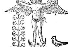 Rosaire des Philosophes, 14ème siècle - domaine public